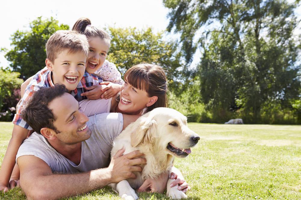 Pasos para mantener una mascota feliz y saludable dentro de la familia
