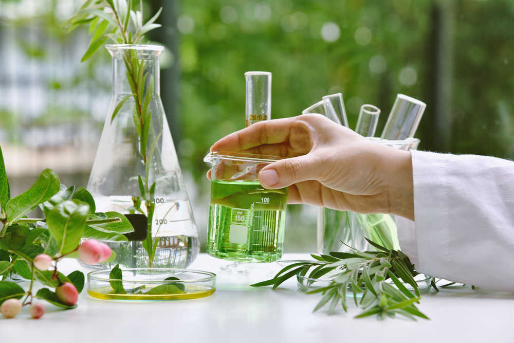 ¿Qué son los Extractos botánicos?